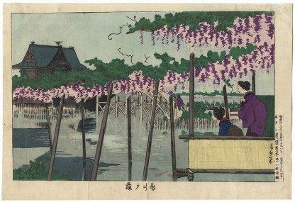 Kiyochika-Wisteria at Kameido Tenjin Shrine