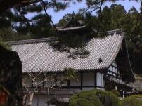 Matsushima24